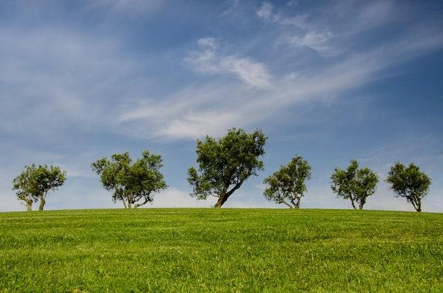 climate smart farming