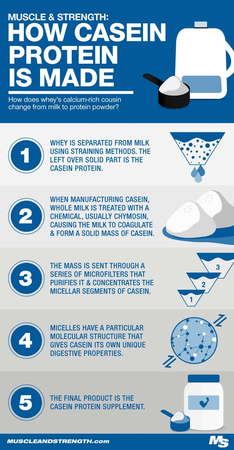 How Casein Protein is Made