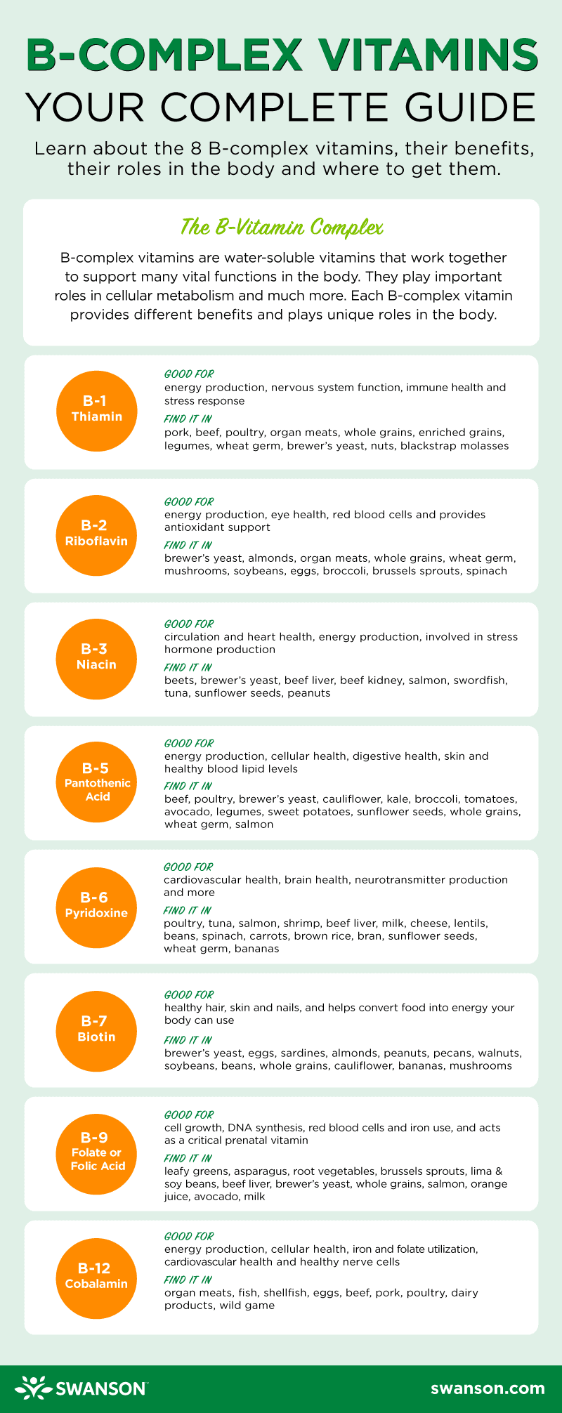 Guide to Vitamin B Infographic