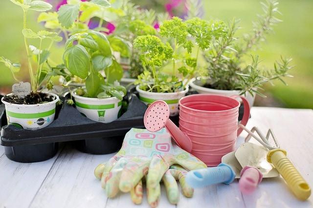 garden on balcony supplies