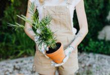 Gardening mistakes newbie farmers make
